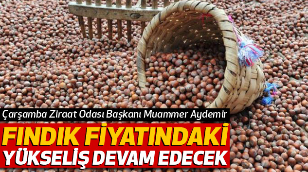 Muammer Aydemir:Fındık Fiyatındaki Yükseliş Devam Edecek