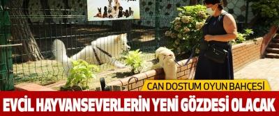 Can Dostum Oyun Bahçesi Evcil Hayvanseverlerin Yeni Gözdesi Olacak