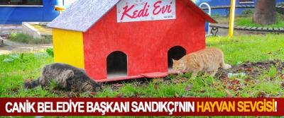 Canik belediye başkanı Sandıkçı'nın hayvan sevgisi!