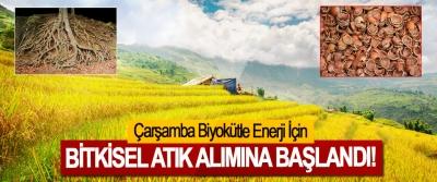 Çarşamba Biyokütle Enerji İçin Bitkisel Atık Alımına Başlandı!