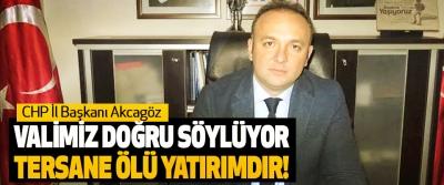 CHP İl Başkanı Akcagöz: Valimiz doğru söylüyor, tersane ölü yatırımdır!