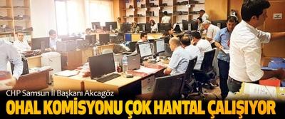 CHP Samsun İl Başkanı Akcagöz: OHAL Komisyonu Çok Hantal Çalışıyor