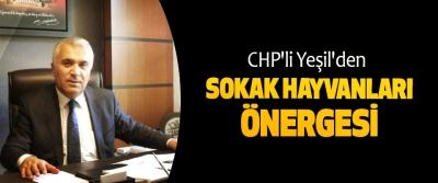 CHP'li Yeşil'den Sokak Hayvanları Önergesi