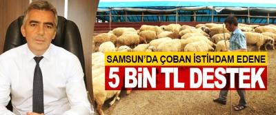 Samsun'da Çoban İstihdam Edene 5 Bin Tl Destek