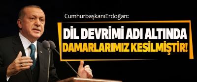 Cumhurbaşkanı Erdoğan: Dil devrimi adı altında damarlarımız kesilmiştir!