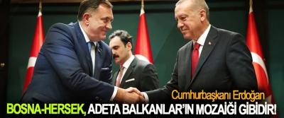 Cumhurbaşkanı Erdoğan: Bosna-Hersek, adeta Balkanlar'ın mozaiği gibidir!