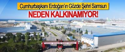 Cumhurbaşkanı Erdoğan'ın Gözde Şehri Samsun Neden kalkınamıyor!