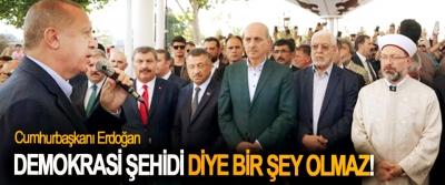 Cumhurbaşkanı Erdoğan: Demokrasi şehidi diye bir şey olmaz!