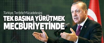 Cumhurbaşkanı Erdoğan, Türkiye, Terörle Mücadelesini Tek Başına Yürütmek Mecburiyetinde