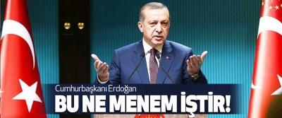 Cumhurbaşkanı Erdoğan, Bu Ne Menem İştir!