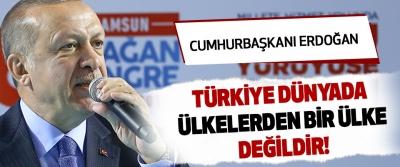 Cumhurbaşkanı Erdoğan :Türkiye dünyada ülkelerden bir ülke değildir!