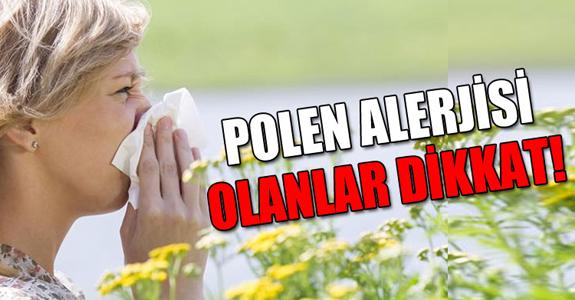 POLEN ALERJİSİ OLANLAR DİKKAT!