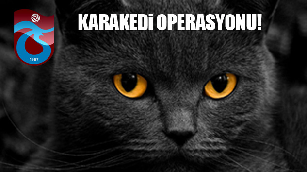 Trabzonspor'da Karakedi Operasyonu!