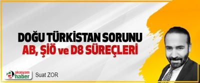 Doğu Türkistan Sorunu, AB, ŞİÖ ve D8 Süreçleri