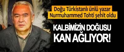 Doğu Türkistanlı ünlü yazar Nurmuhammed Tohti şehit oldu