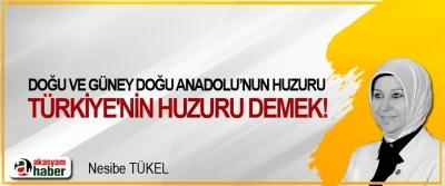 Doğu ve Güneydoğu Anadolu'nun huzuru Türkiye'nin huzuru demek!
