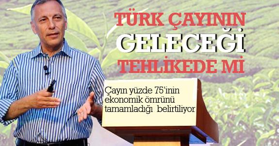 Türk çayının geleceği tehlikede mi?