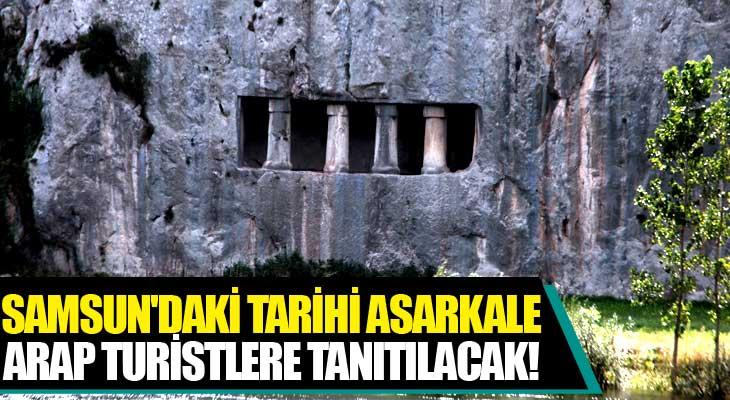 Samsun'daki Tarihi Asarkale, Arap Turistlere Tanıtılacak!