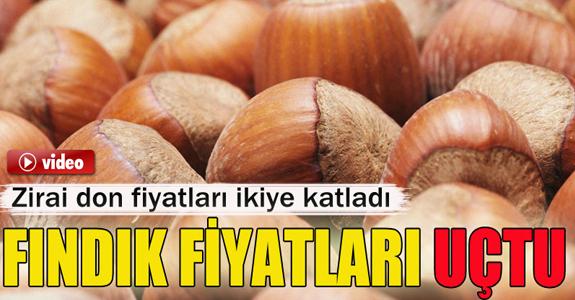 FINDIK FİYATLARI İKİYE KATLANDI!