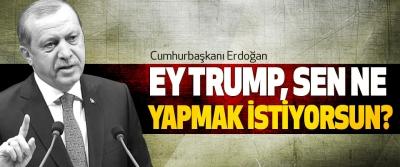 Erdoğan: Ey Trump, Sen Ne Yapmak İstiyorsun?