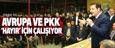 Erdoğan Tok,  Avrupa Ve Pkk