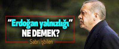 """""""Erdoğan yalnızlığı"""" ne demek?"""
