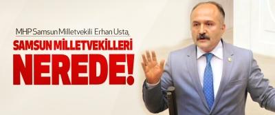 Erhan Usta, samsun milletvekilleri nerede!