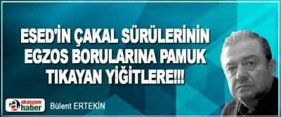 Esed'in Çakal Sürülerinin Egzos Borularına Pamuk Tıkayan Yiğitlere!!!
