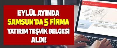 Eylül ayında Samsun'da 5 firma yatırım teşvik belgesi aldı!