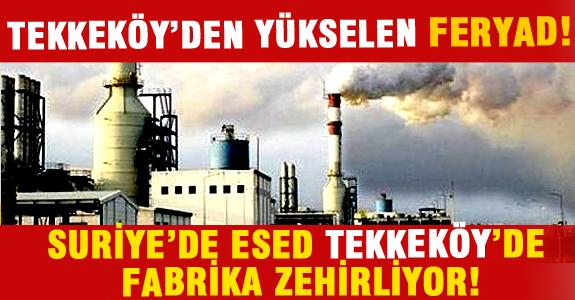 TEKKEKÖY'DEN YÜKSELEN FERYAD!