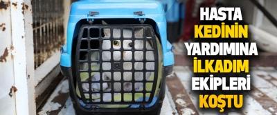 Hasta Kedinin Yardımına İlkadım Ekipleri Koştu
