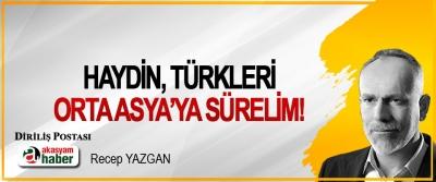 Haydin, Türkleri Orta Asya'ya Sürelim!