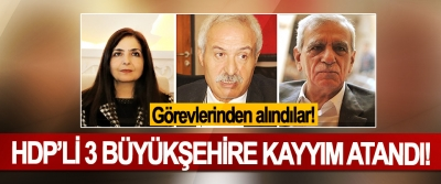 HDP'li 3 Büyükşehire Kayyım Atandı!