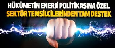 Hükümetin Enerji Politikasına Özel Sektör Temsilcilerinden Tam Destek