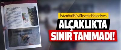 İstanbul Büyükşehir Belediyesi Alçaklıkta sınır tanımadı!