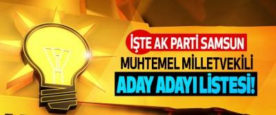 İşte Ak Parti Samsun muhtemel milletvekili aday adayı listesi!