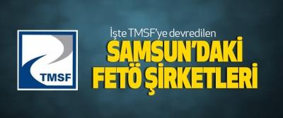 İşte Tmsf'ye devredilen Samsun'daki Fetö Şirketleri