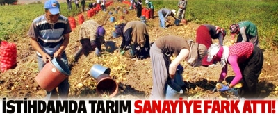 İstihdamda tarım sanayiye fark attı!