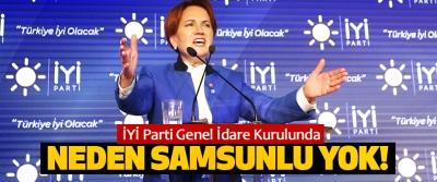İYİ Parti Genel İdare Kurulunda Neden Samsunlu Yok!
