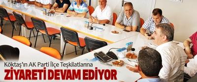 Köktaş'ın AK Parti İlçe Teşkilatlarına Ziyareti Devam Ediyor