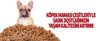 Köpek Maması Çeşitleriyle Sadık Dostlarınızın Yaşam Kalitesini Artırın!