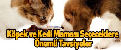Köpek ve Kedi Maması Seçeceklere Önemli Tavsiyeler