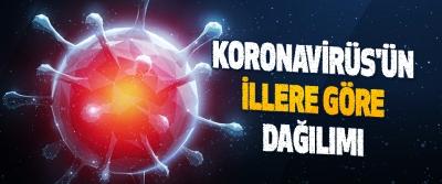 Koronavirüs'ün İllere Göre Dağılımı