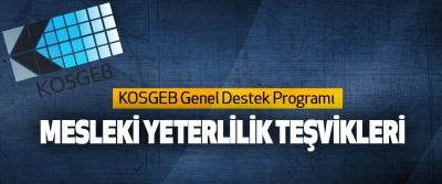 KOSGEB Genel Destek Programı Mesleki Yeterlilik Teşvikleri