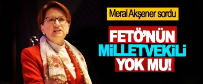 Meral Akşener sordu: FETÖ'nün milletvekili yok mu!