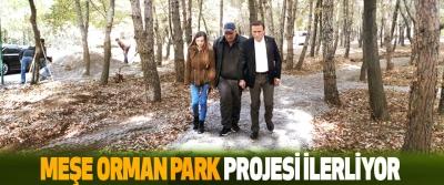 Meşe Orman Park Projesi İlerliyor