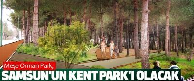 Meşe Orman Park, Samsun'un Kent Park'ı Olacak