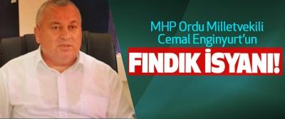 MHP Ordu Milletvekili Cemal Enginyurt'un Fındık İsyanı!