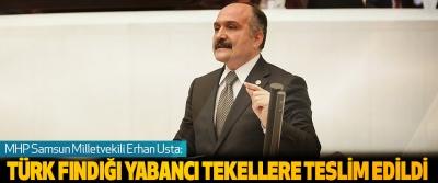 MHP Samsun Milletvekili Erhan Usta: Türk Fındığı Yabancı Tekellere Teslim Edildi