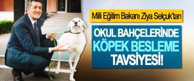 Milli Eğitim Bakanı Ziya Selçuk'tan Okul bahçelerinde köpek besleme tavsiyesi!